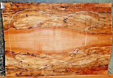 Spalted Curly Maple Wood 7994 Luthier Solid body Guitar Top Set 241/2x16+ x 5/16