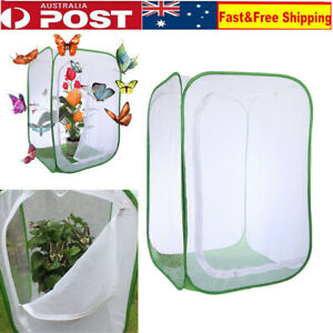 Mantis Stick Small Insect Butterfly Plant Cage Foldable Pop-up Housing Enclosure