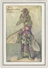 CICELY MARY BARKER c1930 THE DEAD-NETTLE FAIRY Painting Vintage Art Book Print