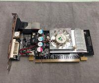 NVIDIA GEFORCE GF8400 256MB  64BIT DDR2 TV DVI GRAPHIC CARD