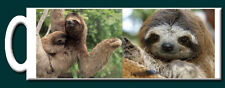 Three Toed Sloth Mug - Gorgeous & Cute NEW Design