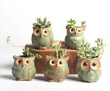 Ceramic Owl Succulent Plant Pot Flower Planter 5pcs Set Mini Garden
