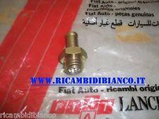 FIAT CAMPAGNOLA AR76 DS-NUOVO DUCATO DS 90/94 - VALVOLA SFIATO 9935184