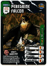 Peregrine Falcon #38 Deadly 60 TCG Rare Foil Trade Card (C377)