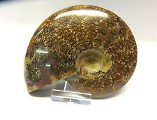 Dekorativer Ammonit opalisiert 12x10cm 436g + Klarsicht Ständer Nr. 32