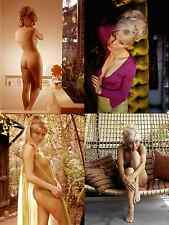 SUSAN DENBERG JOB LOT SET 10 PHOTOS 7 X 5  HAMMER ACTRESS HOT SEXY NUDE GLAMOUR