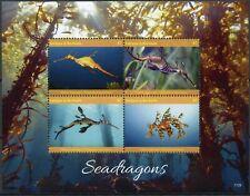 More details for antigua & barbuda marine animals stamps 2017 mnh seadragons seahorses 4v m/s