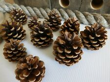 50 NATURAL PINE CONES FLORAL CRAFT DECORATIONS TABLE ART COLLAGE PROJECT