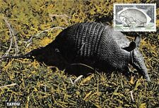 Carte Maximum FDC France LE TATOU DE GUYANNE Octobre 1974 CAYENNE
