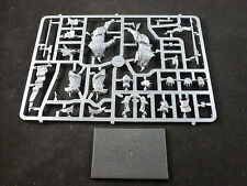 Empire Demigryph Knight on Plastic Frame