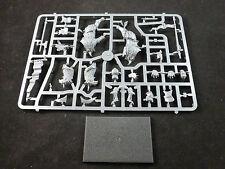 Empire DEMIGRYPH Knight sur cadre en plastique