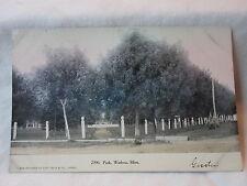 Wadena Mn Minn Minnesota, Park , early postcard,