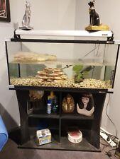Fish/Turtle Tank 3ft