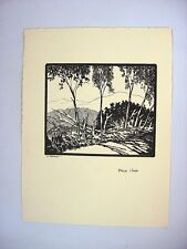 1930-40's C.Palmer Ink Drawing View of Blue Job Mounntains, New Hampshire