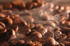 2lbs Peru Approcassi Cajamarca Fair Trade Organic Shade Grown Light Coffee Beans