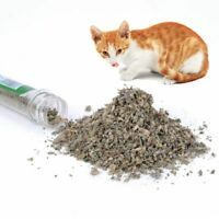 40ml Organic Natural Catnip Interactive Pet Cat Treats Toy Cat Mint Snacks
