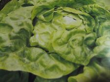 Salat Dicke Blonde, Saatgut,  Samen,Gemüse, Gemüsesamen,Sämereien.Salat