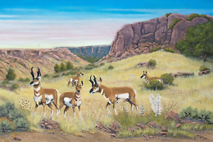 Jim Lang Antelope Country Original Wildlife Oil Painting on Canvas 24x36