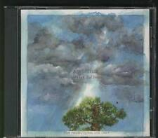 A WEATHER Everyday Balloons USA PROMO CD ALBUM INDIE TEAM LOVE RECORDS