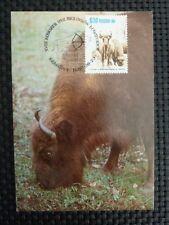 POLEN MK ANIMALS BISON WISENT MAXIMUMKARTE CARTE MAXIMUM CARD MC CM a9960