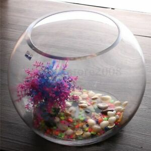 Glass Handmade fish bowl round Vase Terrarium 15 cm planter centre pieces