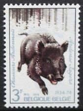BELGIUM 1974 Wild Boar: Ardennes Chasseurs Regiment. Set of 1. MNH. SG2367..