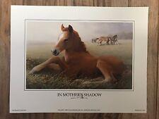 "IN MOTHER'S SHADOW Horse Print Art 7 x 9"" Keeneland Lexington Kentucky FREE SHIP"