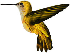 Colorful Yellow HUMMINGBIRD Flying Pose  - WindoCling StickOn Decal Sun Catcher