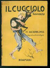 RAWLINGS M. K. IL CUCCIOLO BOMPIANI 1945 ILL. ENRICO MONTALTO DI FRAGNITO