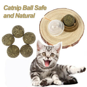 Cat Toy Catnip Ball Lick Solid Nutrition Ball Help Digestion With Wall Mount