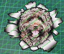 Cockapoo Burst / Ripped Funny Dog Car Van suit case Vinyl Sticker Cock a Poo