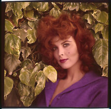 Tina Louise Striking Vivid Color Vintage Glamour Pose original Transparency Rare