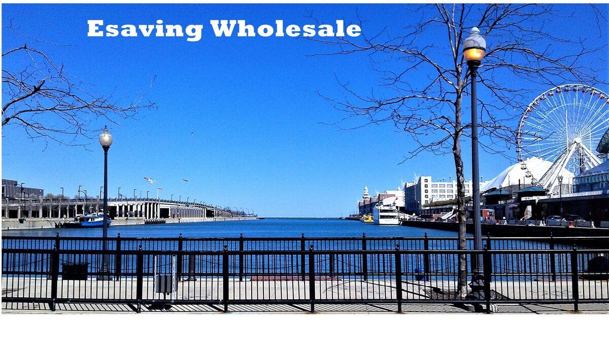 Esaving Wholesale USA