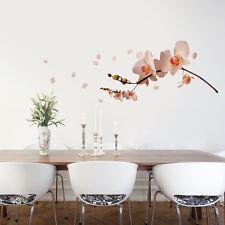 Orchidée blanc crème rose vif Décoration Murale Grand énorme de maison fleurs