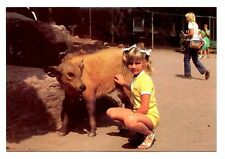Congo Buffalo Calf Postcard Catskill Game Farm New York Animal Nursery Girl Pet