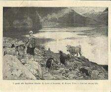 Stampa antica LAGO DI ALLEGHE panorama Dolomiti Belluno 1894 Old antique print