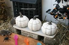 POTTERY BARN GOURD CONDIMENT SET -NIB- SERVE UP SOME GOURD-GEOUS SEASONAL CHIC!