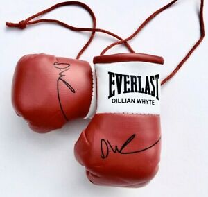 Autographed Mini Boxing Gloves Dillian Whyte