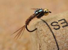 12 Flies Quasimodo Pheasant Tail Nymph Fishing Flies-Mustad Signature Fly Hooks