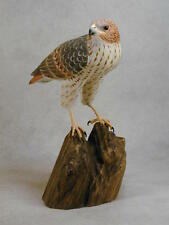 5 1/2 inch Red-tailed Hawk Original Wood Carving