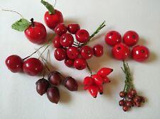 Beeren - Früchte - Dekoration - Basteln - Floristik - Selbermachen - Herbst