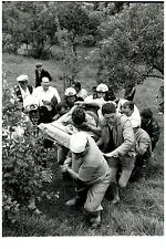 Tour de France 1960, La chute du coureur français Roger Rivière  Vintage silver