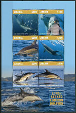 Liberia 2019 MNH Long-Beaked Dolphin 6v M/S Dolphins Marine Animals Stamps
