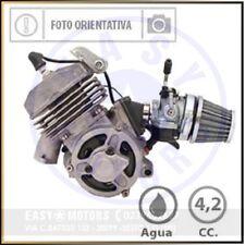POLINI 143.002.001 MOTORE MINIMOTO H2O 4,2 HP