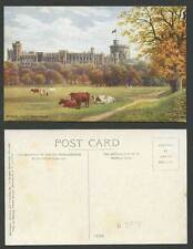 J Salmon Collectable Berkshire Postcards