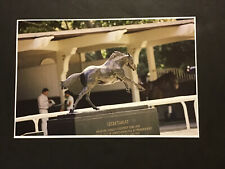 Secretariat sculpture BELMONT PARK Horse Racing