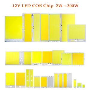 LED 12V Chip COB Light Source Bulb 2W-300W Lamp for Bulb Spotlight Flood Light