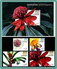 AUSTRALIA 2006 FLOWERS + S/S MNH CV$59.50 (NO, YOU DON'T HAVE IT!)