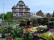 Top Angebot 3 Tage im SleepySleepy Hotel Gießen inkl. FR für 2 Pers im DZ