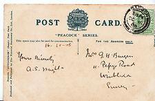 Genealogy Postcard - Ancestor History - Burgess - Wimbledon - Surrey    U2900